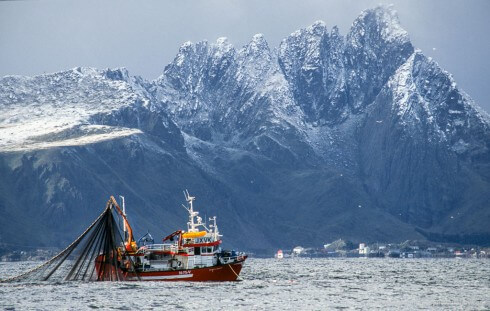 "A herring seiner earning his ""bread and butter"" in the Vestfjord."