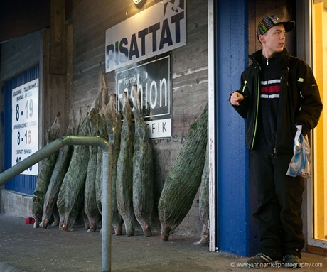 A young Greenlandic man standing outside the store, which is selling imported Christmas trees, an incongruity we thought in this treeless land. We chatted a bit as he tried out his very good English, learned from movies and computer games.