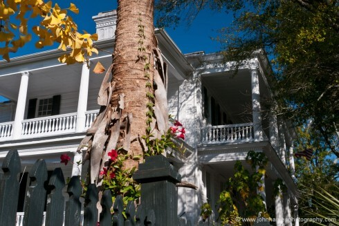 I don't normally like shots that are this busy. But for me, somehow this composition works, although it breaks many of the classic rules. I think that maybe it's the way the shot gives you a feeling for the Charleston architecture and how the houses are set in a riot of lush vegetation.