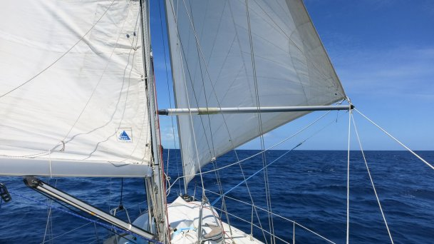 Downwind Sailing—Poling Out