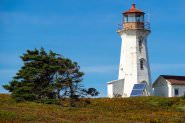 Cape Negro Island, Nova Scotia—A Fortuitous Encounter